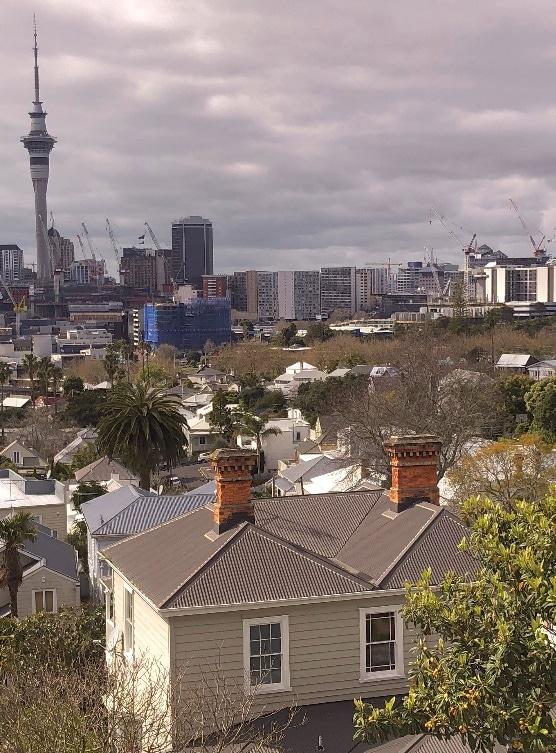 Old Auckland Masonry Chimney